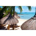 Vintern 2014/15: Mauritius och Bali bland vinterns nyheter