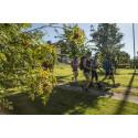 More people discover St. Olavsleden trail