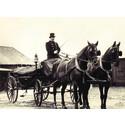 Taxi Göteborg vrider tillbaka klockan 100 år under Gothenburg Horse show och kör häst och vagn