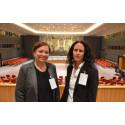 Lærere fra Børstad på studietur til FN i New York