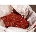 Rosépeppar – ingen riktig peppar men med en fantastisk smak