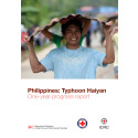 Typhoon Hayian - one year progress report - Tyfonen Hayian - utvecklingsrapport efter ett år