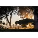 Upplev Toscana som aldrig förr