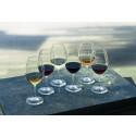 Regnbågsprovning - vinprovning i regnbågens färger