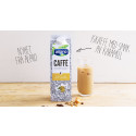 NYHET FRA ALPRO: Plantebasert iskaffe med smak av karamell