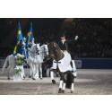 New top level event for Sweden and Sweden International Horse Show – Saab Top 10 Dressage