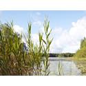 Utbyggnad av vatten och avlopp för en god och säker miljö