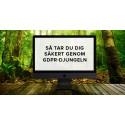 Så tar du dig säkert genom GDPR-djungeln