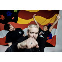 THE AVALANCHES - SLIPPER NYTT ALBUM 8.JULI - WILDFLOWER
