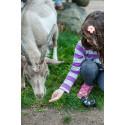 Get i barnens bondgård