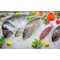 Asia-Pacific Frozen Fish and Seafood Market Present Scenario and Growth Prospects 2017-2022