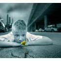 Luftföroreningar påverkar barns och ungas psykiska hälsa