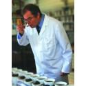 INBJUDAN – Klassisk te-provning med engelsk expert