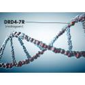 Kaukokaipuun juuret ovat geeneissämme – elämyshakuiset DRD4-geenin kantajat ovat alttiimpia matkaan lähtöön ja muuttamaan