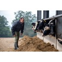 Müller incentivises further herd health and welfare improvements