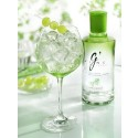 Internationella Gin & Tonic Dagen
