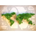 A Shift in Sourcing creates business Sustainability and Strategy