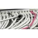 När säkerhetstestade din organisation nätverket senast?