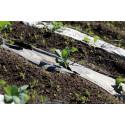 Nedbrytbar odlingsduk istället för plast på åkern