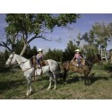 ATG partner till Fotografiskas utställning Like a Horse