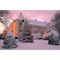 Adventszeit mit Hygge-Garantie: Scandlines empfiehlt die schönsten Weihnachtsmärkte in Dänemark