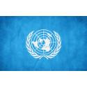 Sexuell läggning och könsidentitet en fråga för FN