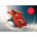 Upplevelse Indoor Wingsuit Flying