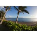 Molokai Island, Hawaii.