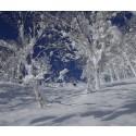 Näissä ulkomaiden hiihtokohteissa lasketellaan pitkälle kesään