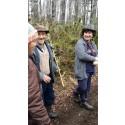 Nytt avtal om hållbart skogsbruk mellan Sverige och Chile