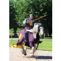 Tornerspel i dagarna tre 29, 30, 31 juli på Skoklosters slott