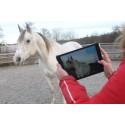 RISE vill väcka tjejers teknikintresse med hästar