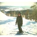 Tretton vinternyheter i Hälsingland!