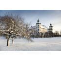 Kom i julstämning på Skoklosters slott