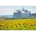 Biogasproduktionen fordoblet i Danmark på 3 år