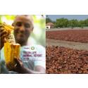 Cocoa Life Annual Report 2018 : Fremdrift og nye mål for Cocoa Livet 2025