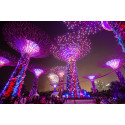 Gardens by the Bay celebrates SG50