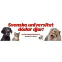 Djurrättsalliansen protesterar mot att svenska universitet dödar djur