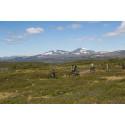 Flow i fokus för Ramundbergets cykelsatsning