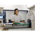 Anders Wall-stipendium till ung fysiker som utforskar hjärnans struktur