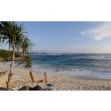 momondo Flygsökindex: Bali kan bli ny resefavorit