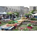 Exploring Italy's Bel'Paese