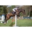 Runsten Equestrian Games Vecka 22