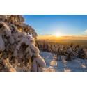 Glänzend unterwegs – Winterwandern im Erzgebirge