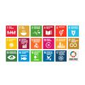Gör kulturen och scenkonsten till en del av FN:s utvecklingsmål