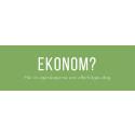 Topp 20 viktigaste kompetenserna för ekonomer