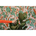 Kukikasta, värikästä ja suurikuvioista – Iwa Herdensjön uudet ja trendikkäät tapettiaiheet
