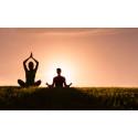 Celebrating International Yoga Day!