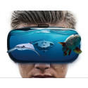 PowerRay VR Googles