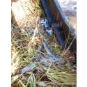 Miljöåtgärder ger fri vandring för fisk i skånska vatten